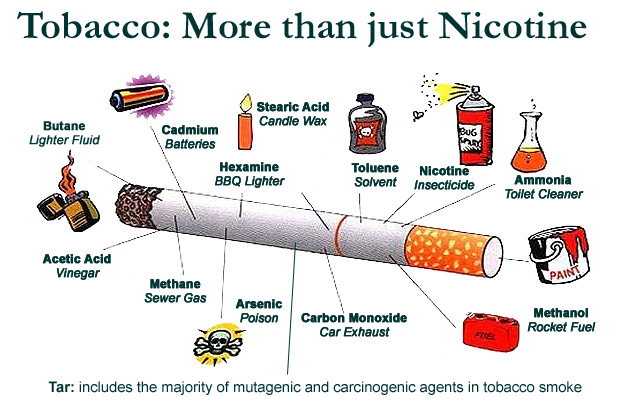 Chemicals In Tobacco Pictures to Pin on Pinterest - PinsDaddy